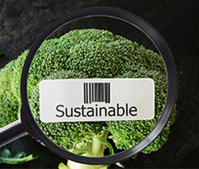 Sustainability in the food and beverage industry