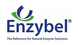 Enzybel